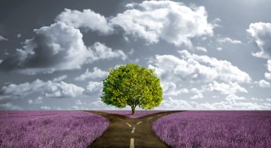 Making Choices at the Crossroads of Life